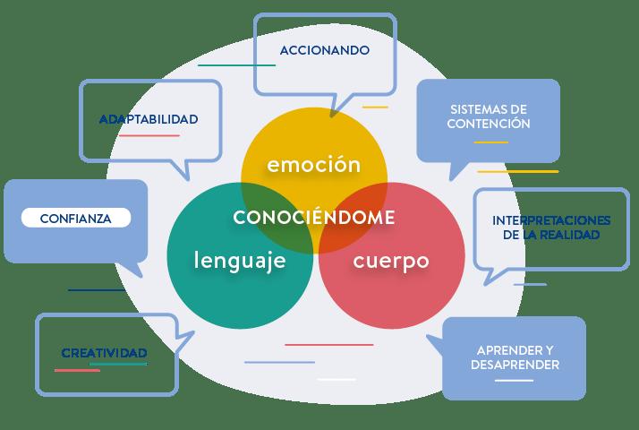 """En el diagrama que se titula """"programa acciona madres y padres: de la emoción a la acción"""" podemos observar tres círculos dentro de un círculo contenedor. Cada círculo tiene un color diferente. El de arriba es amarillo y su texto es """"emoción"""". El de la derecha es rojo y su texto es """"cuerpo"""" y el de la izquierda es verde y su texto es """"lenguaje"""". Los tres círculos se unen y sobre la unión hay un texto que dice """"conociéndome"""". Por fuera del círculo contenedor, se describen los siguientes textos: sistemas de contención, interpretaciones de la realidad, aprender y desaprender, creatividad, confianza y adaptabilidad. Y encima del círculo, como cierre conceptual de estas palabras, el texto es """"accionando""""."""