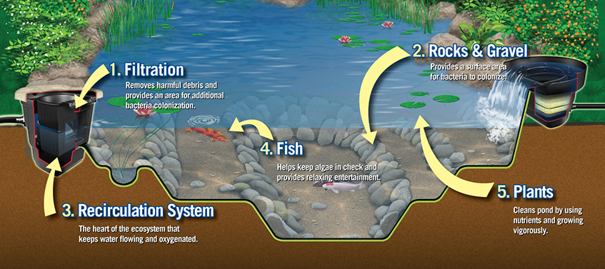 Farm Pond Aeration Systems
