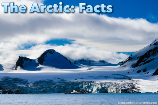 The Arctic Facts For Kids Information Pictures Amp Video