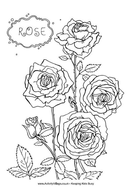 Rose colouring page, i love you grandma coloring pages