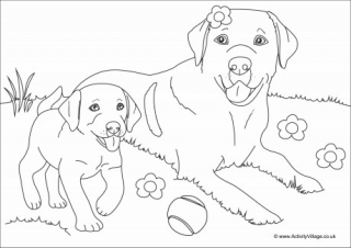 coloring pages dog # 68