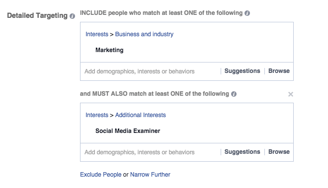 Detailed targeting example in Facebook Power Editor with two interests