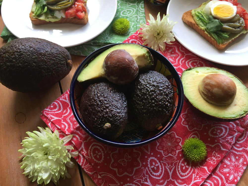 Avocados From Mexico, always delicious, always fresh