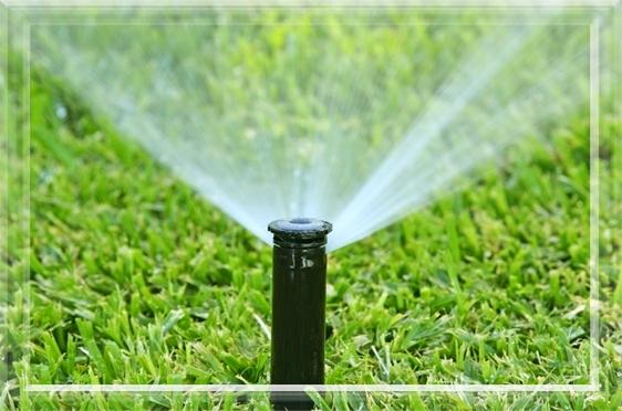Parts System Backflow Preventer Sprinkler