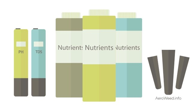Northern Lights Autoflower Grow Guide