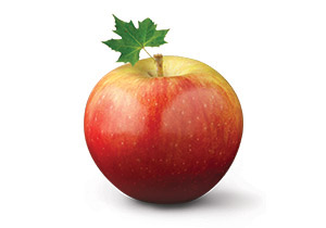 Canadian Apples Take Centre Stage   Agriculture and Agri Food Canada     Canadian Apples Take Centre Stage