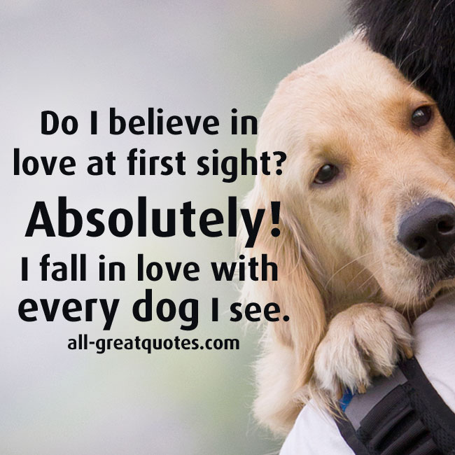 Funny Love First Sight Quotes