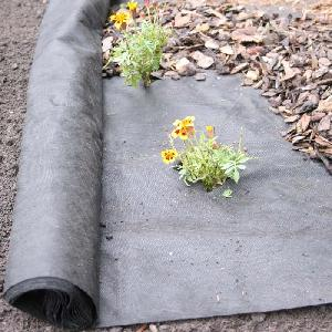Ground Cover Weed Control Fabric 50g From Plant