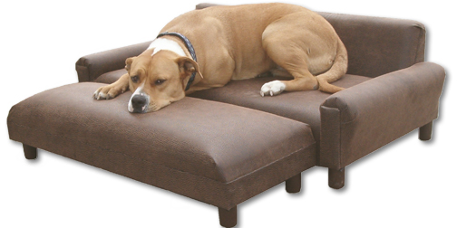 Comfortable Place For Your Furry Friend Dog Furniture Ideas