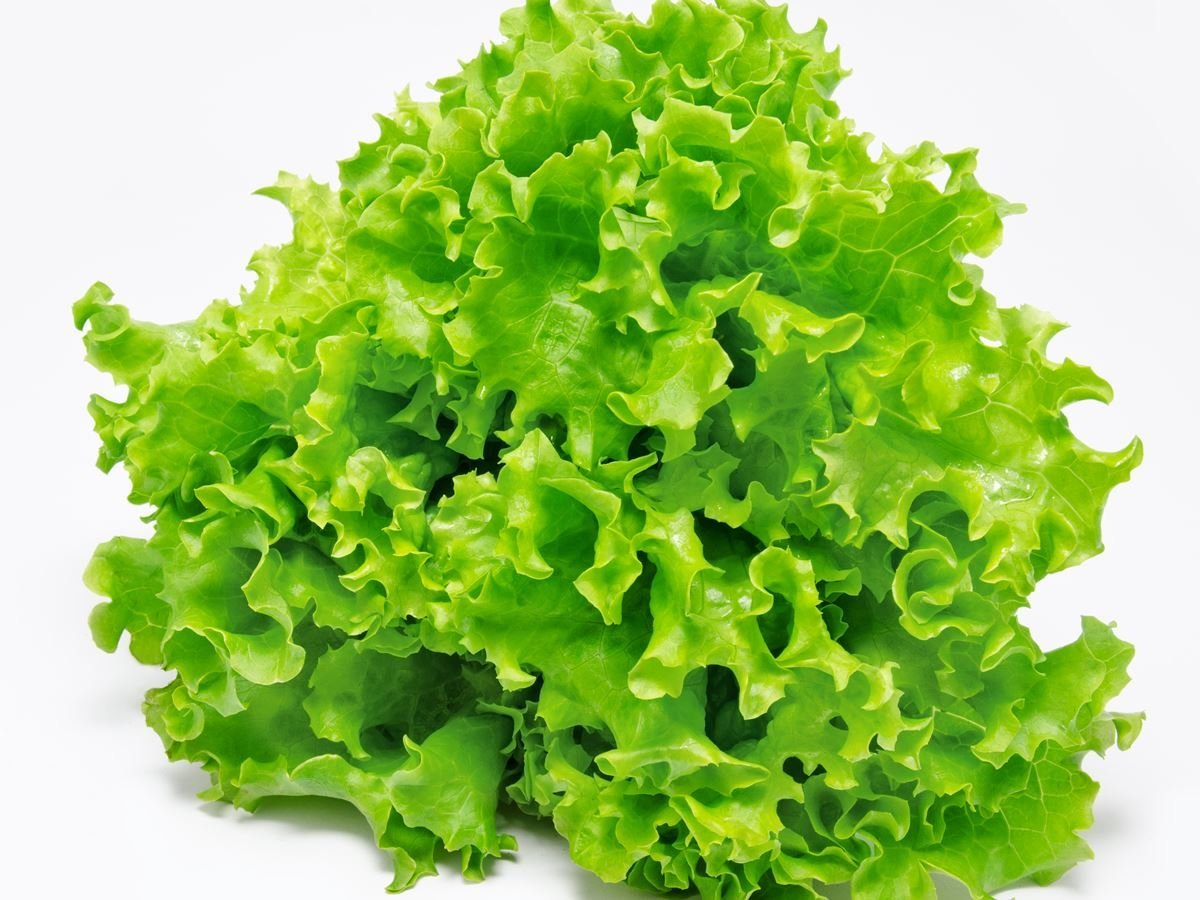 The Goodness in Lettuce