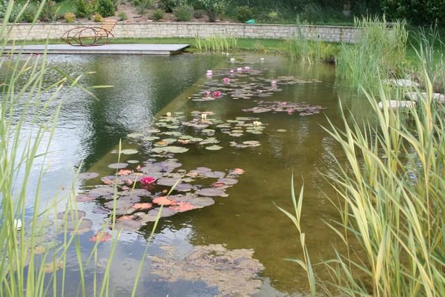Artificial Pond Construction