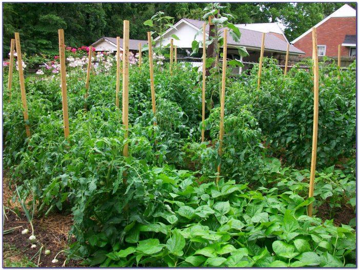 Craigslist Ky Farm And Garden