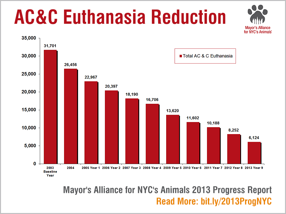 Us 2012 Euthanasia Statistics