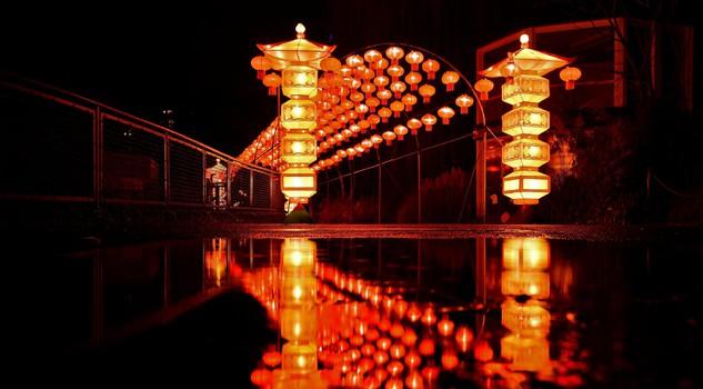 La Zoo Light Show