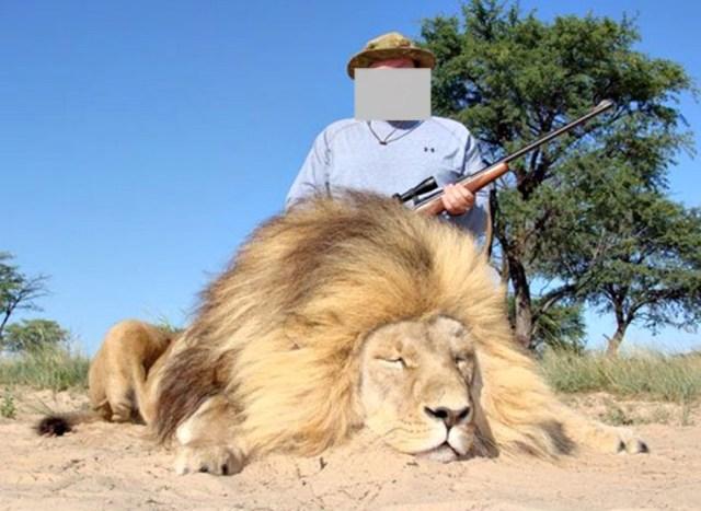 man eaten by lion - 980×716