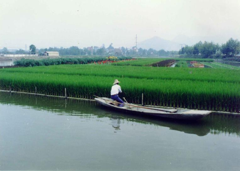 Farm Pond Benefits