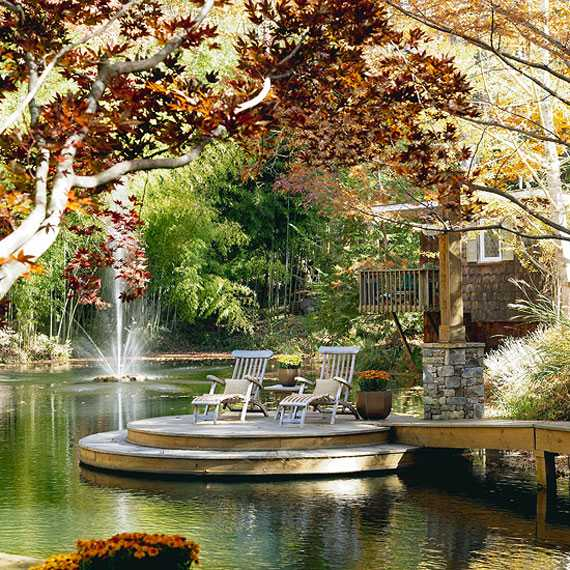 Backyard Water Pond Ideas