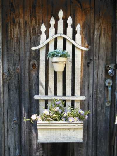Where Buy Potted Plants