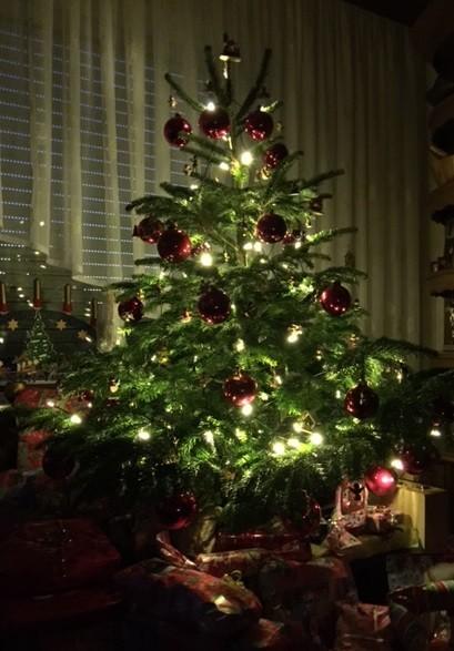Christmas Lights Decorating