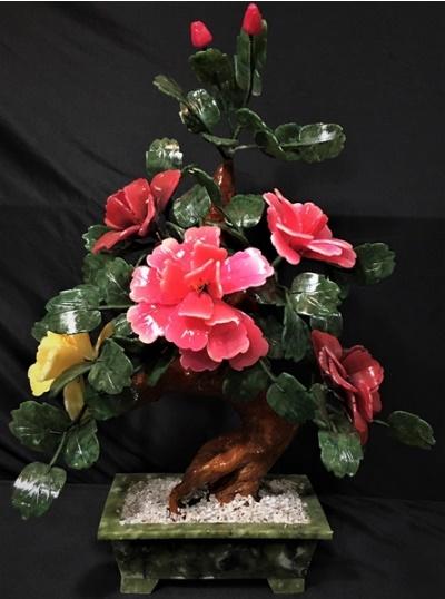 Jade Flower Bonsai Tree 20a 2