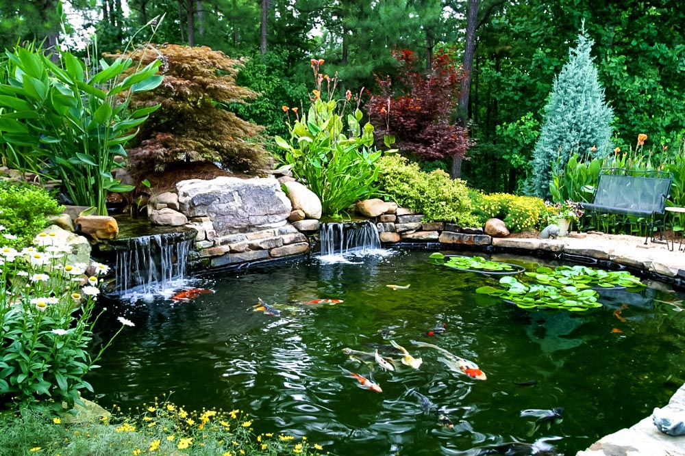 Small Koi Pond Design