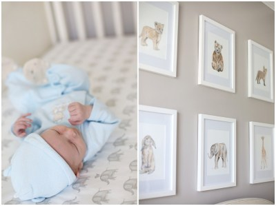 Richmond VA Lifestyle Photographer | Baby Cooper | Newborn ...