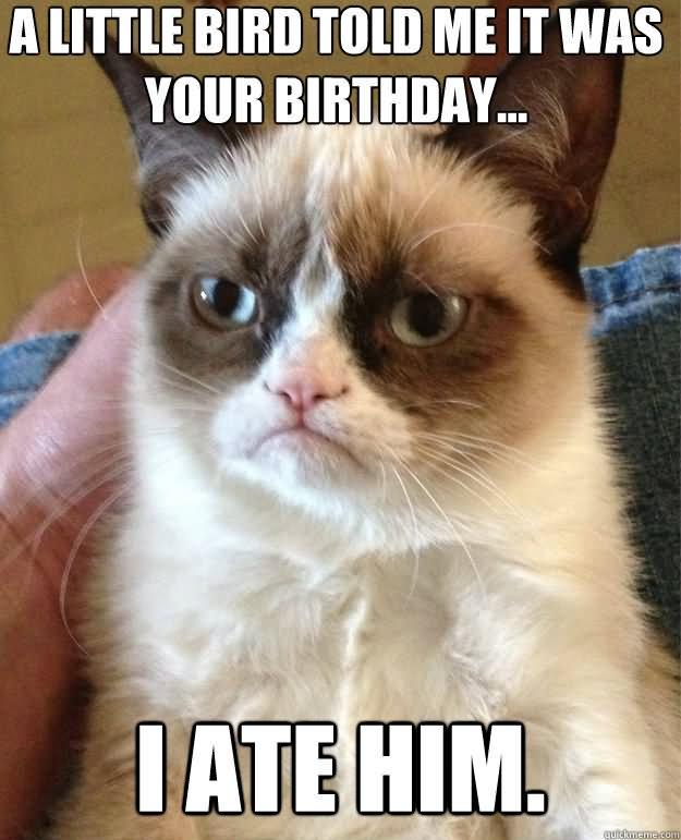 Funny Birthday Meme Smile It S Your Birthday Picture