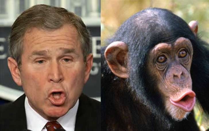 George W Face Bush Funny