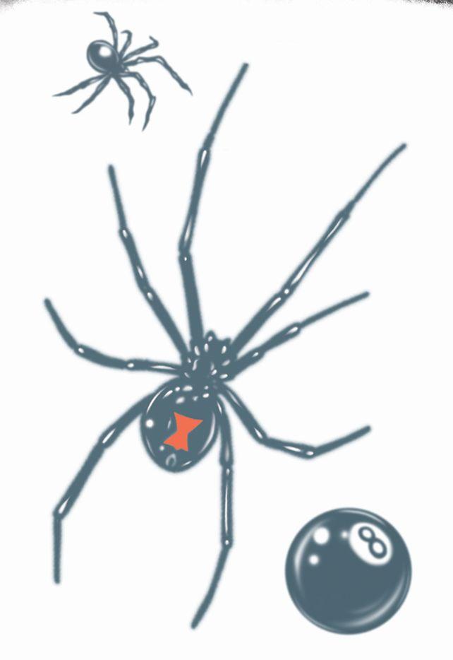 Tattoo Spider Black Widow