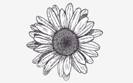 15 Best Tattoos Images Small Daisy Tattoo Tattoo Gardening