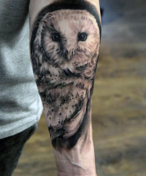 barn owl tattoo - 600×725