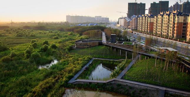 Landscape Design Zone 5