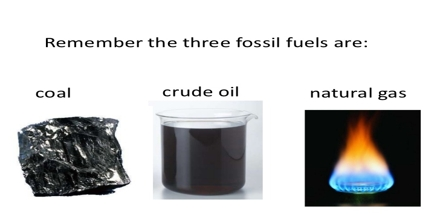 Fossil Fuel And Crude Oil Assignment Point