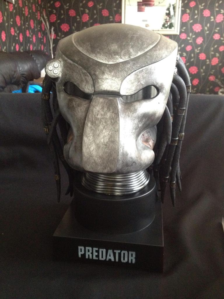 Predator Look Alien It