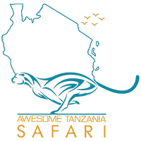 Awesome Tanzania Safari