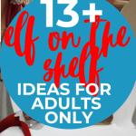 Adult Elf on the Shelf ideas