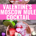 Best vodka to use for a Moscow mule