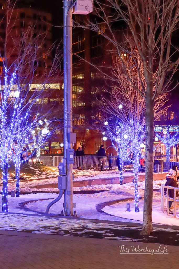 Things To Do in Grand Rapids In The Winter