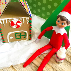 Elf Builds A Gingerbread House