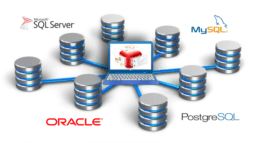 Bacula Enterprise Backup Software Executive Summary 4