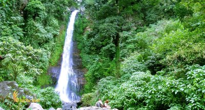 Gitgit Waterfall   Singaraja Bali Places of Interest