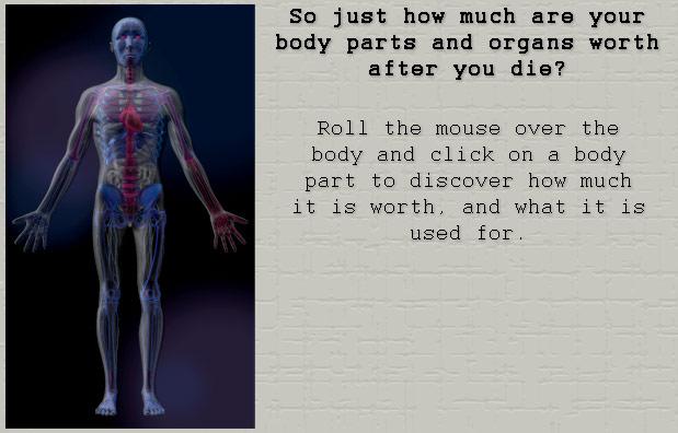 How Much Body Wrapsdefault1