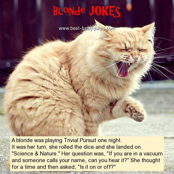 Best Blonde Jokes All Time
