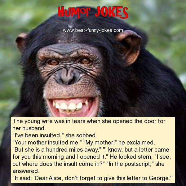 Humor Jokes: The young wife was i...