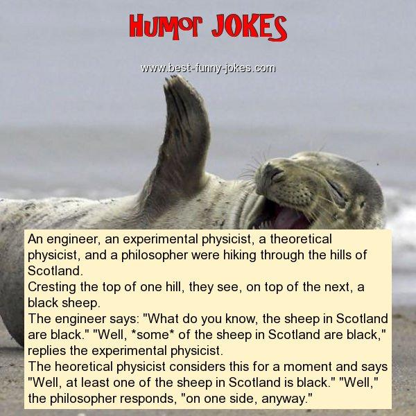 Humor Jokes: An engineer, an expe...