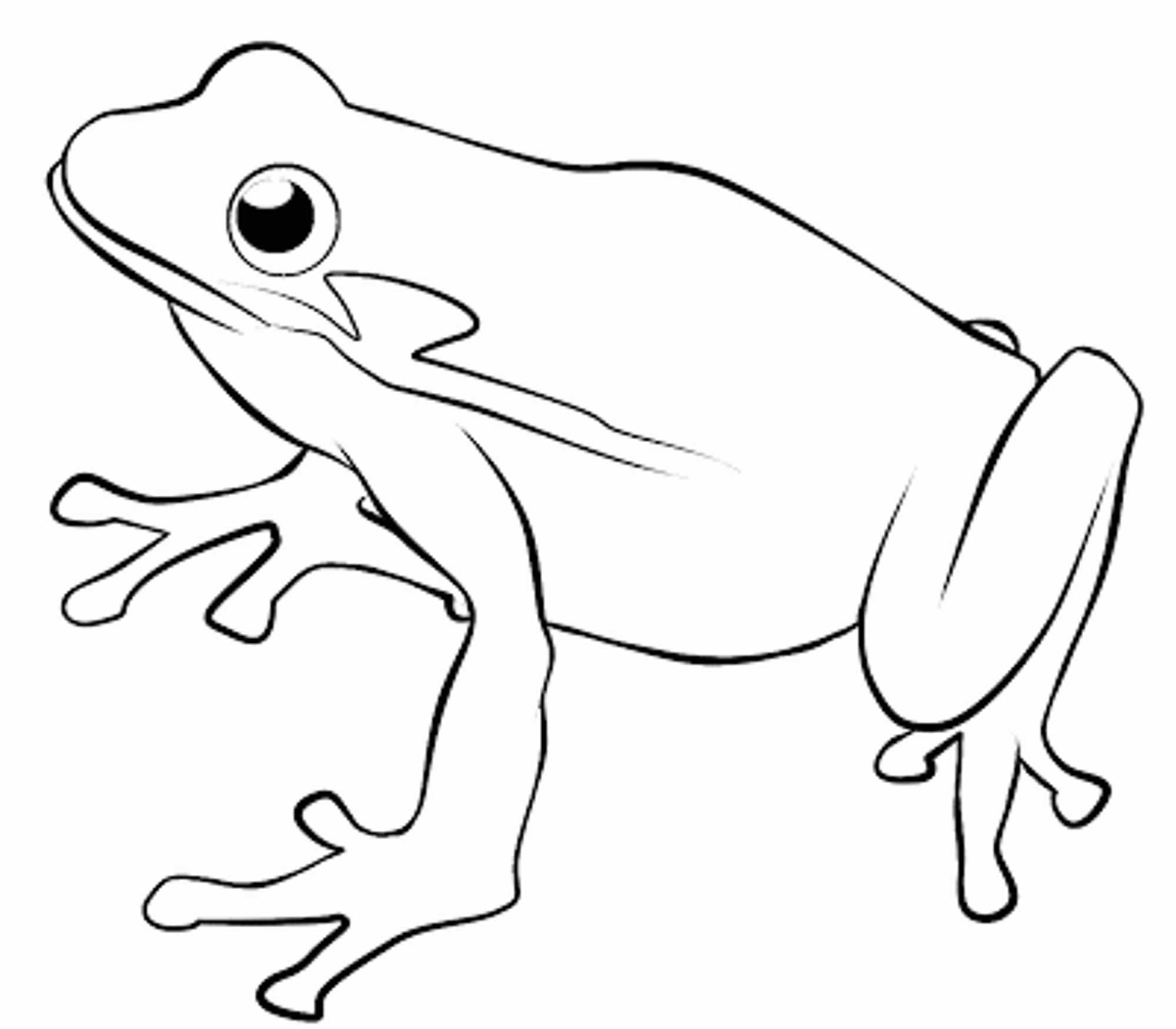 frog-coloring-pages-for-kids | | BestAppsForKids.com