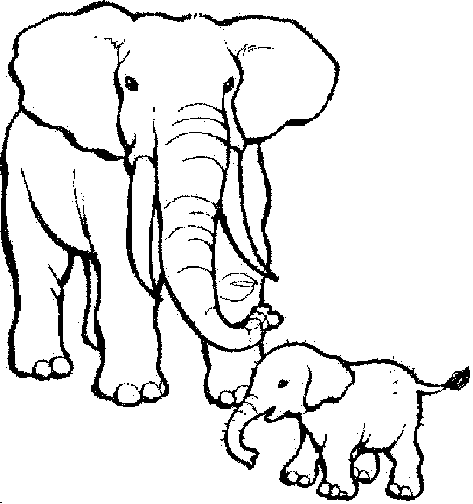 Coloring Pages Of Elephants Bestappsforkids