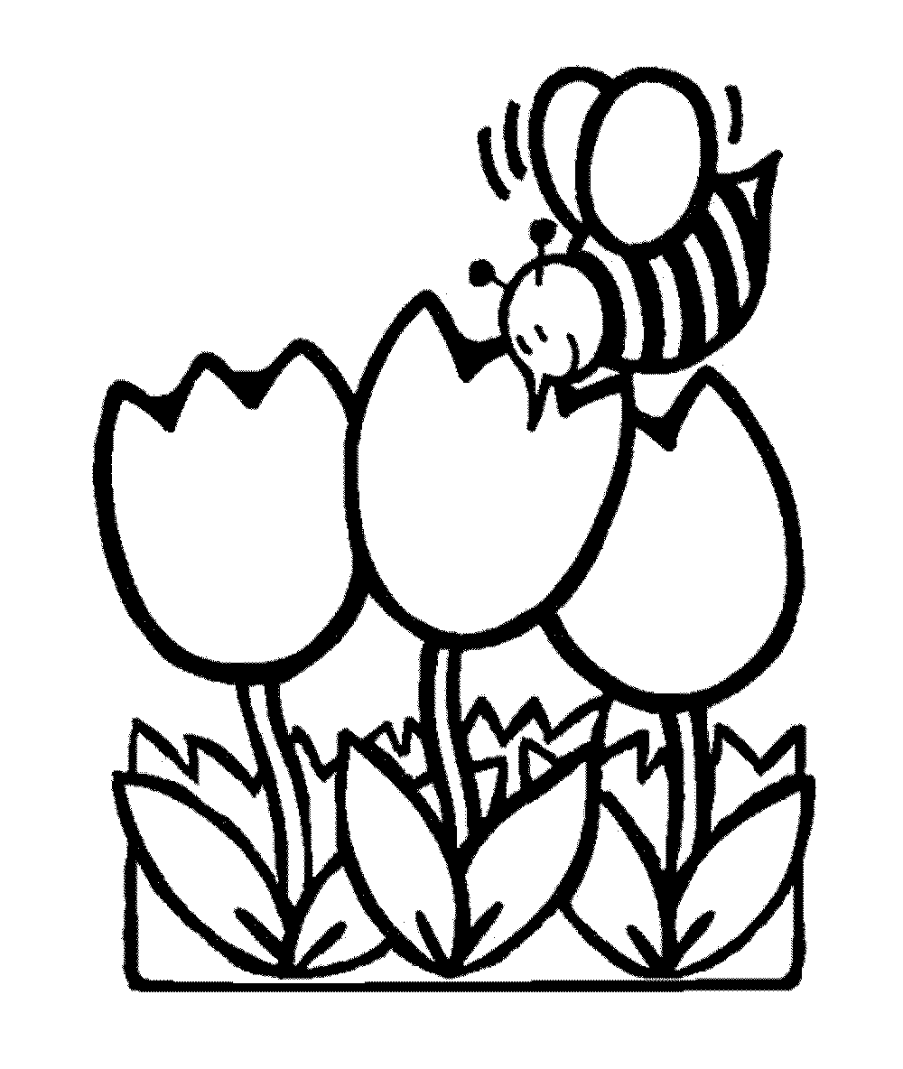 Printable Coloring Pages Flowers Bestappsforkids