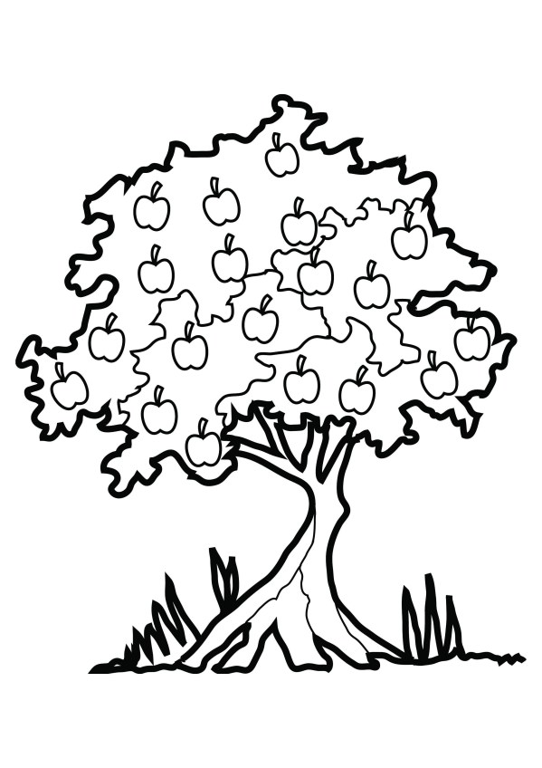 fall tree coloring page # 86