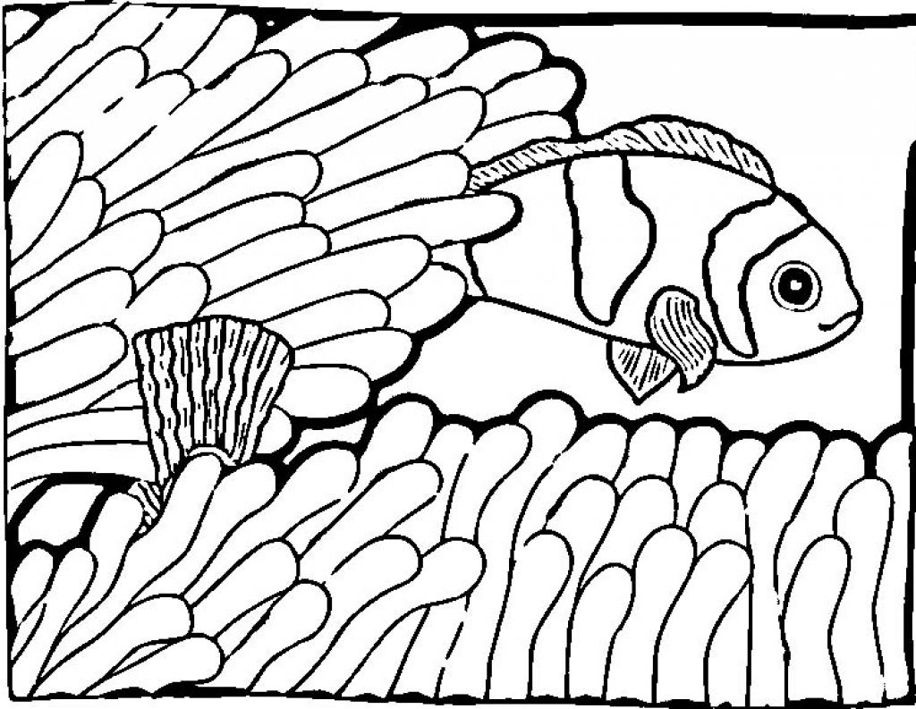 Printable Fish Coloring Book Coloring Page